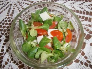 Polníčkový salát s rajčaty